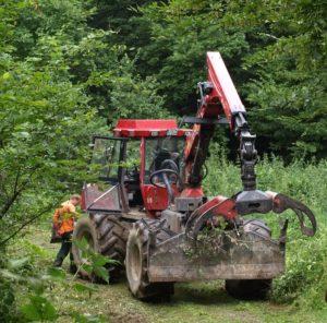 Forstarbeiter mieten unsere Ferienwohnung als Monteurzimmer