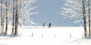 Wintersport im Solling - Skilanglauf für Wintersportler